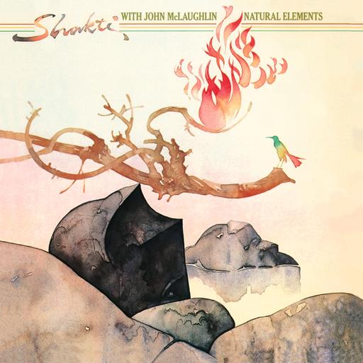 Shakti With John McLaughlin: Natural Elements